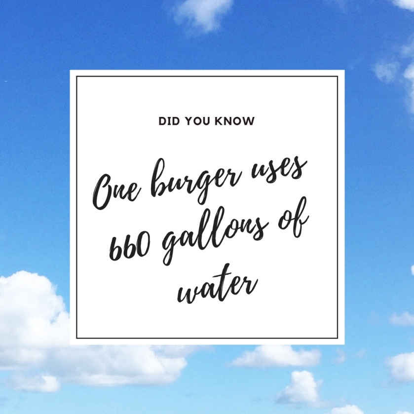 did-you-know-one-burger-uses-660-gallons-of-water