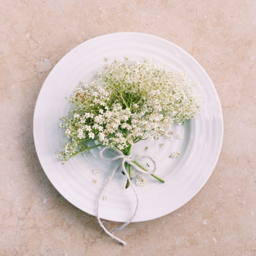 Deliciously Simple Elderflower Champagne Recipe